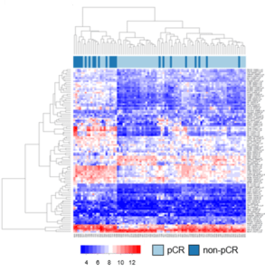 Illustration of gene expression in breast cancer in a heat map