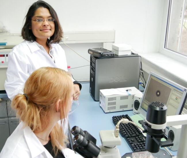 Um Tierexperimente auf ein Minimum zu beschränken, forschen die IfADo-Wissenschaftler an Alternativen. Dafür wurden sie jetzt mit einem internationalen Preis ausgezeichnet.