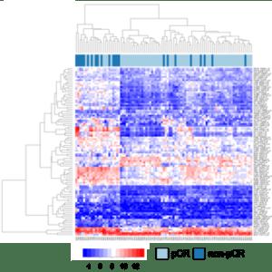 Verbildlichung der Genexpression in Bruskrebs in einer Heatmap